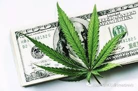 加州众议院批准  K-12校园合法使用医用大麻!