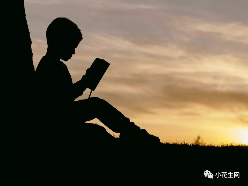 8年从不间断陪孩子读书,这位资深编辑爸爸说:选书,不能任性!